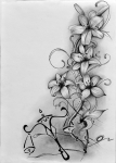 kresba-uhel-charcoal-predloha-tetovani-lilie-vahy
